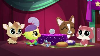 Littlest Pet Shop: A World of Our Own: Season 1: Fine, Feathered Fortune Teller
