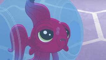 Littlest Pet Shop: A World of Our Own: Season 1: Pet, Peeved
