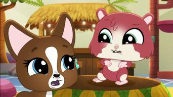 Littlest Pet Shop: A World of Our Own: Season 1: The Call of the Mild