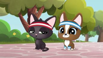 Littlest Pet Shop: A World of Our Own: Season 1: Paw It Forward