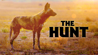 The Hunt (2013)