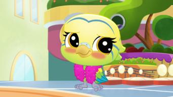 Littlest Pet Shop: A World of Our Own: Season 2: Pet Side Story