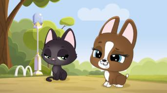 Littlest Pet Shop: A World of Our Own: Season 2: The Ancient Art of Clean Fu